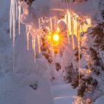 Keväällä aurinko alkaa lämmittää ja vesi muodostaa jääpuikkoja