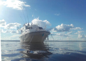 Simojärvi Boat Safari in Ranua